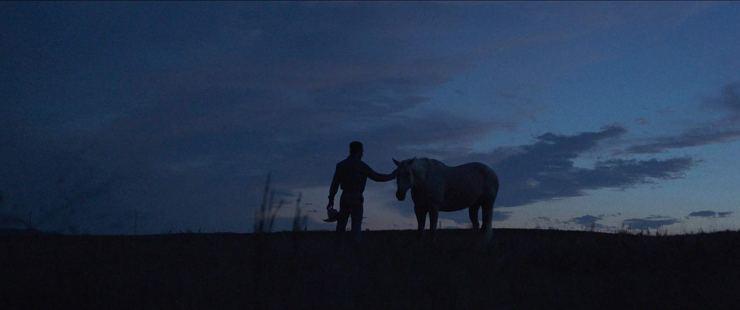the rider (3)